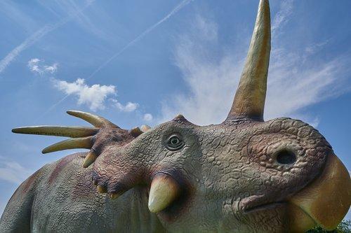 dinosaur  tusk  extinct