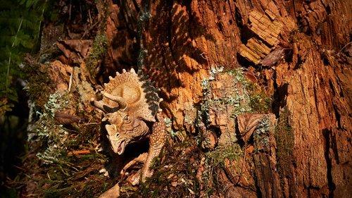 dinosaur  forest  dino