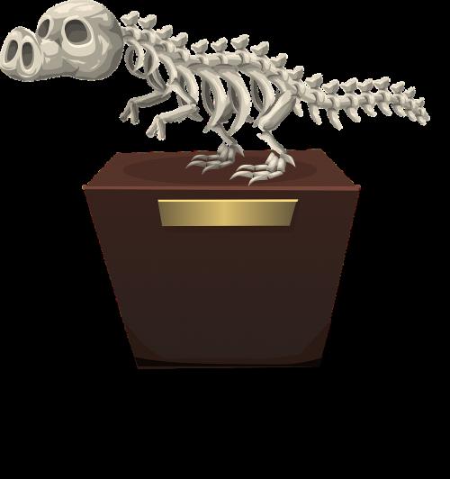 dinosaur skeleton paleontology