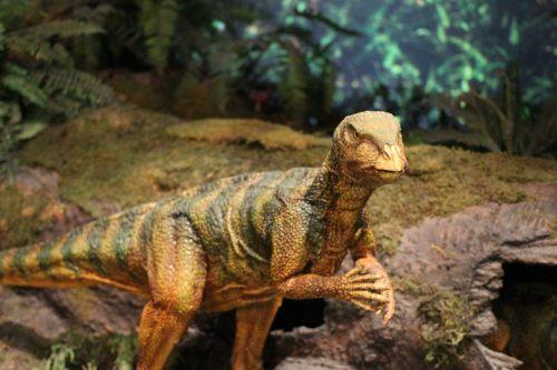 dinosaur zoo jurassic