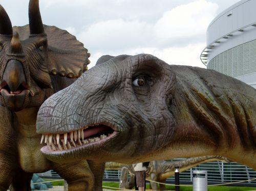 dinosaur brontosaurus head