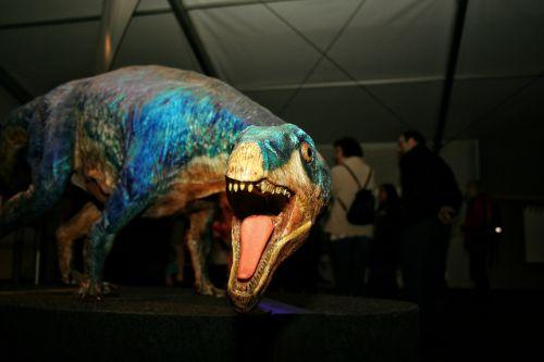 dinosaur model foot