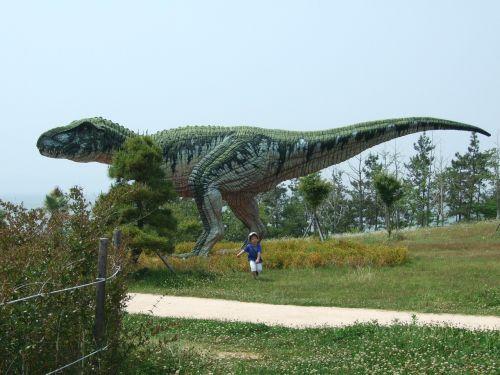 dinosaur museum dinosaurs herbivorous
