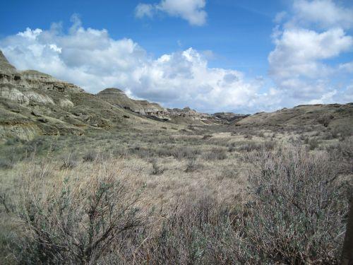 dinosaur provincial park steppe nature