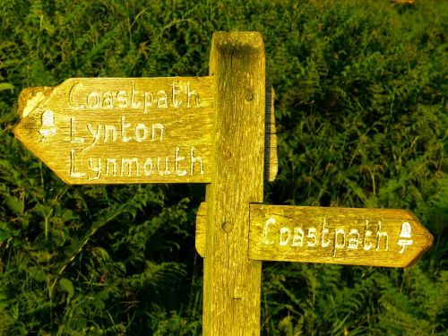 directory wood signposts