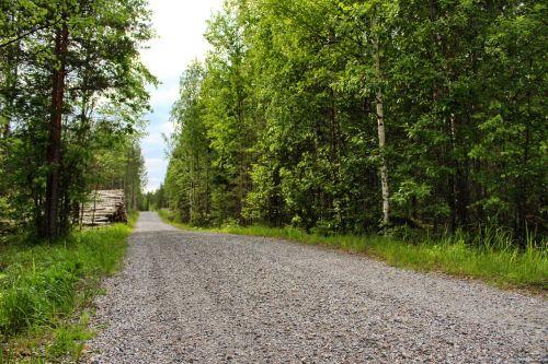 dirt road finland nature