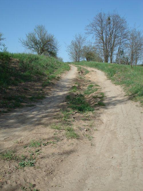 purvo kelias,kelias,kaimas,lauko kelias,ūkio kelias,šalies juosta,kalnas,vasara