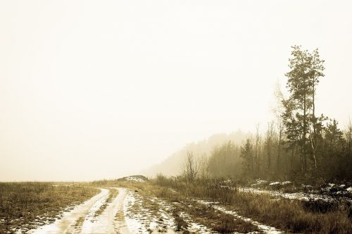 dirt road rural country side