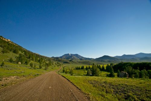 Dirt Road Into The Wilderness