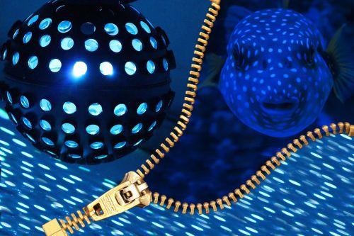 disco ball disco nightclub
