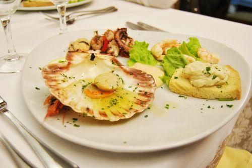 dish italian cuisine mediterranean
