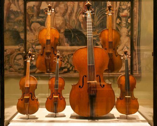 display case violins violas