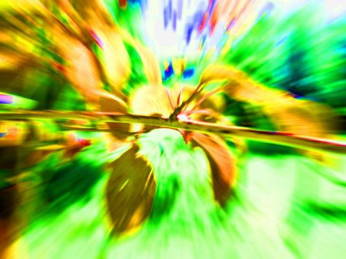 Distorted Twig In Golds And Greens