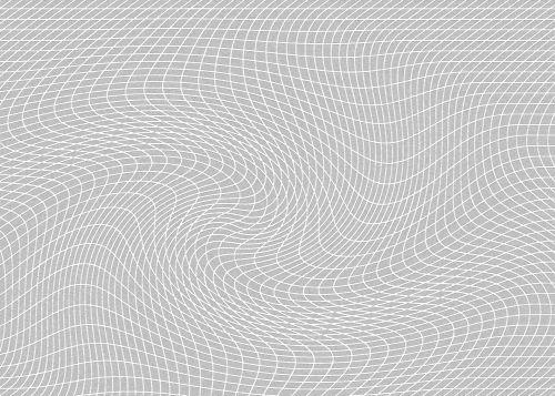 Distorted White Net Pattern