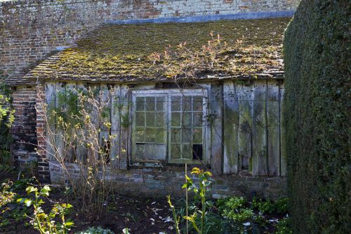 disused potting shed lean-to broken windows