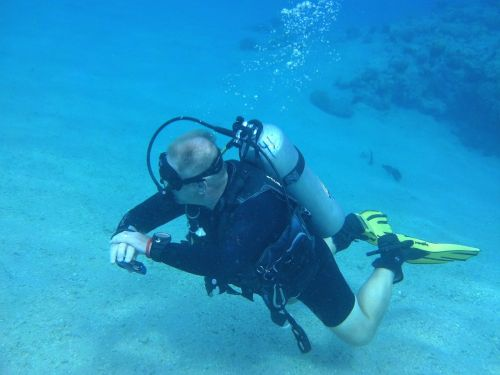 diver the red sea diving