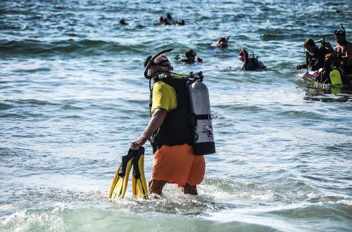 diver diving ocean