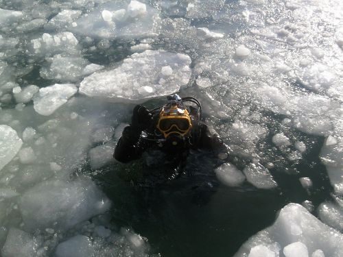 diver ice diving diving