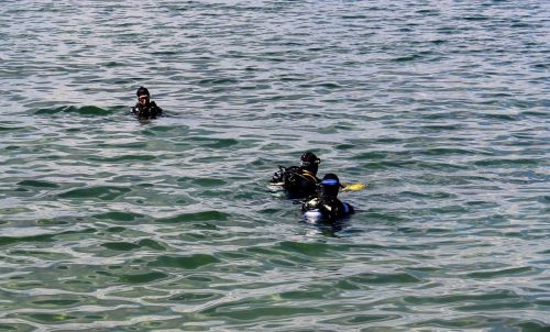 divers diver group testing