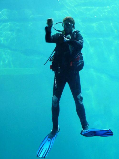 divers diving suit fins