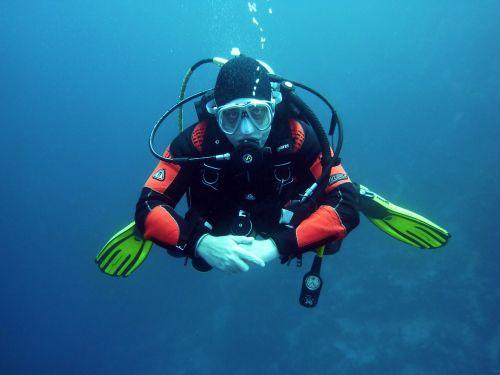 divers scuba divers diving