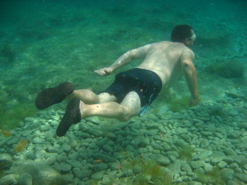 diving summer sea