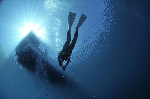 diving divers sea