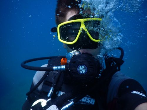 diving divers underwater