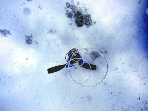 diving sea ozan