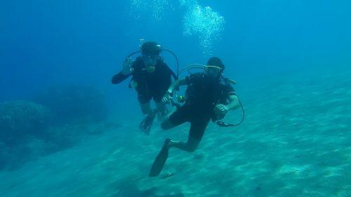 diving sea underwater