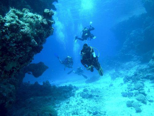 diving underwater sea