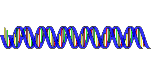dna double helix science