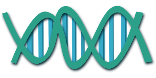 dna helix science