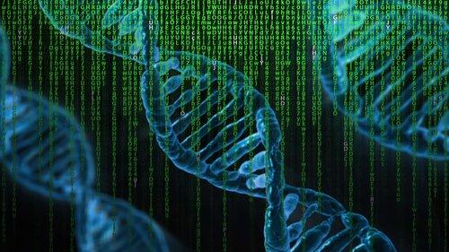 dna  matrix  genetics