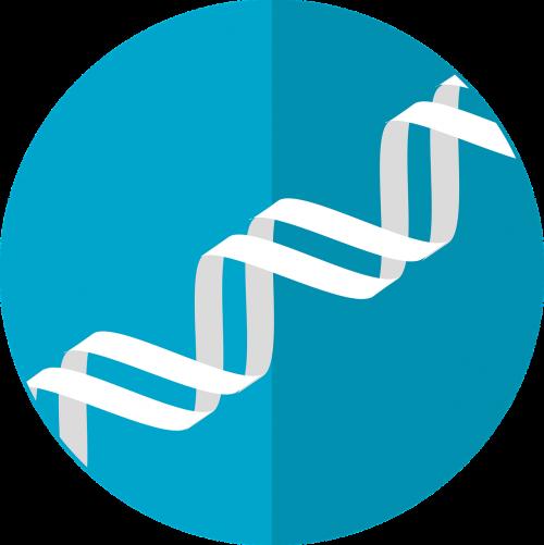 dna icon gene helix