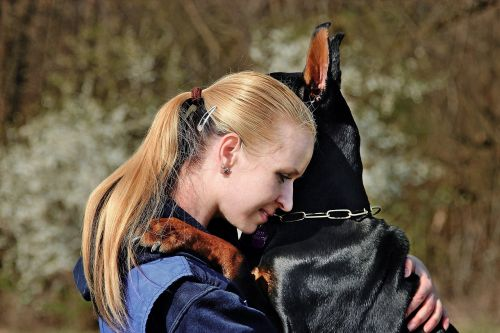 doberman dog hug