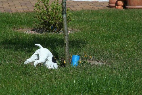 šuo,medis,plastmasinis