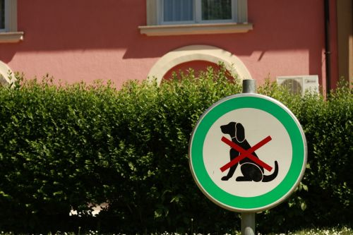 dog sign animal