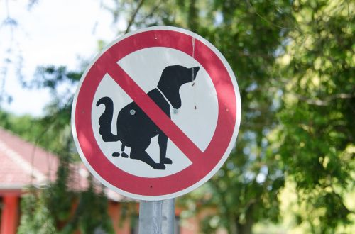 dog ban sign