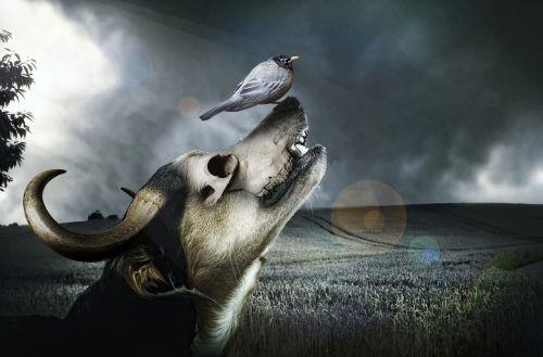 dog horn new