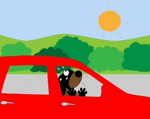 dog car hot