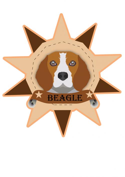 dog colored cute belgian