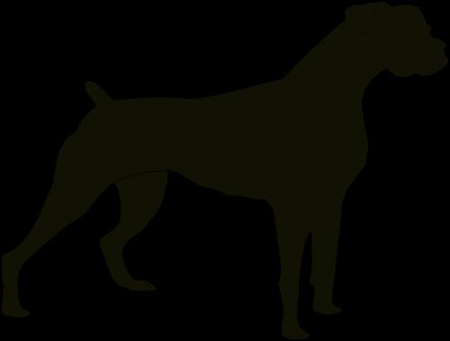 dog black animal