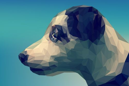 dog background cute