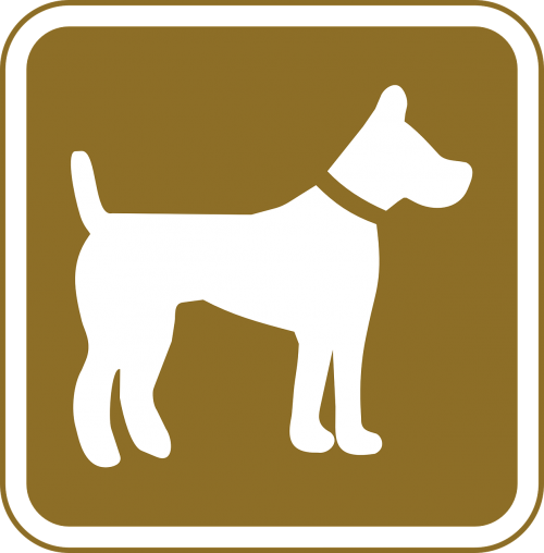dog pets allowed