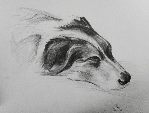 dog figure doggy
