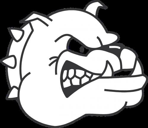 dog head angry