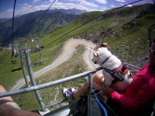 dog chairlift mountains