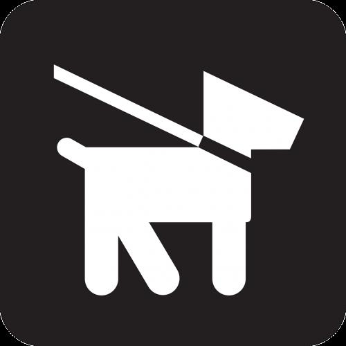 dog dog leash lead