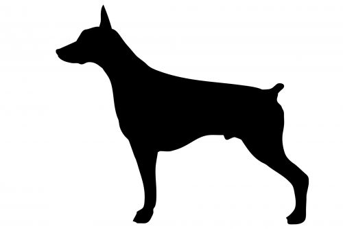 Dog, Doberman Black Silhouette